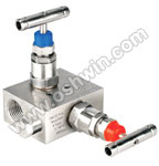 SS304/ 316L 2 Way Manifold Valves,R2,Type2