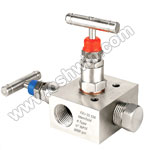 SS304/ 316L 2 Way Manifold Valves,R2,Type 5