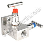 SS304/ 316L 2 Way Manifold Valves,R2,Type 7
