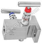 SS304/ 316L 2 Way Manifold Valves,T2,Type 8 Direct Mounting